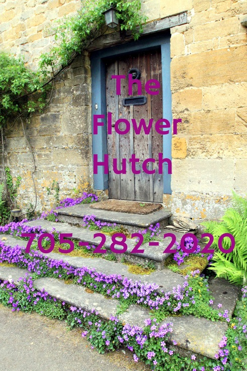 The Flower Hutch In Gore Bay!