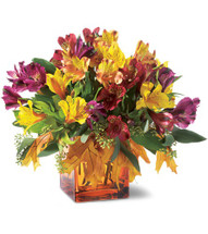 Autumn Alstroemeria Bouquet