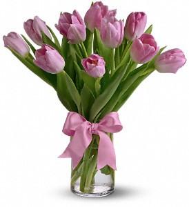 Pink tulips vased.