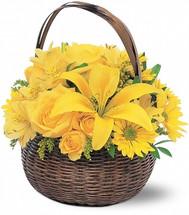Little Yellow Basket