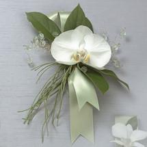 Phalaenopsis Corsage