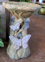 Butterfly Bird Bath
