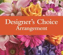 Designers Choice