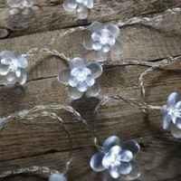 Blossom LED Fairy Lights