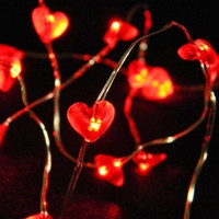 2m AA Heart Seed Lights