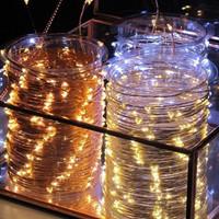 20m Plug In Seed Lights