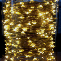 10m Plug In Silver Wire Seed Lights