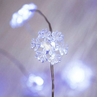 2m AA Snowflake Seed Lights