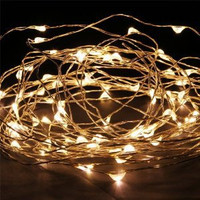 5m AA Multi-Function Silver Wire Seed Lights String