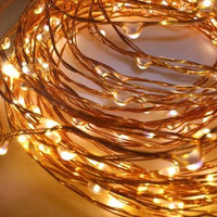 10m Plug In Copper Wire Seed Lights