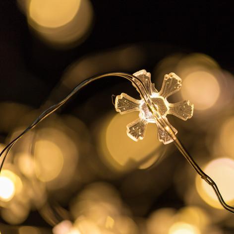Close up of Flower Lights