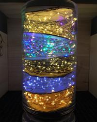 5m AA Seed Lights