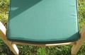 Green  Lovina Stacking Chair Cushion