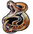 Rattlesnake Patch