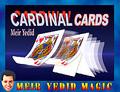 Cardinal Cards - Meir Yedid