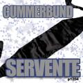 Cummerbund Servante