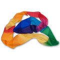 Multicolor Silk Streamer 4 inch by 9 feet from Magic by Gosh - Trick