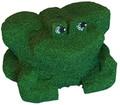 Foam Frog