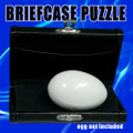 Brief Case Puzzle