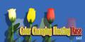 Multiple Color Changing Floating Rose Set