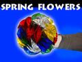 Spring Flowers Mylar, Medium 8 Inch