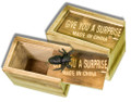 Boxed Spider - Wood Box