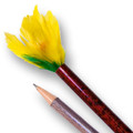 Vanishing Pencil to Flower - Feather