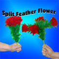 Split Feather Flower - 4