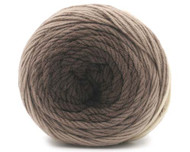 Trendsetter Yarn - Merino Eclipse - Shades of Brown 5004