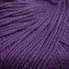 Cascade - 220 Superwash - Brambleberry #857