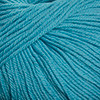 Cascade - 220 Superwash - Dark Aqua #849
