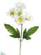 Daisy Silk Stem - Wedding Flowers