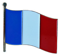 France Flag Pin / French Flag Pin