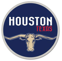 Houston Texas Lapel Pin