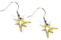 Tampa Bay Rays Star Earrings