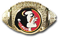 Florida State Football Pin