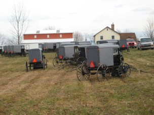 AmishQuilter Buggies