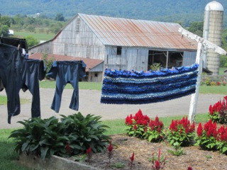 Amish Sarah's Laundry line and yard