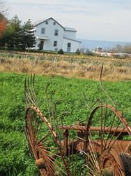 Mennonite Katie Home