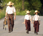Amish Quilter - Amish Walking by Pat Little