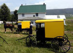 Amish Quilter - Yellow Amish Buggy