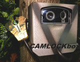 Wildgame Innovations Buck Commander Nano 8 MP Lightsout Security Box