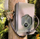 USA Trail Cams PATRIOT w Security Box