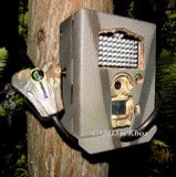 Cabela's Outfitter Plus™ 20 MP Infrared HD Security Box