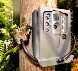 Moultrie TRACE SG-25 Security Box