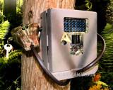 Covert Black Viper (5380) Security Box