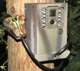 Moultrie W-30i Security Box