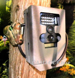 Wildgame Innovations Terra Extreme 10 Lightsout (TX10B1-8) Security Box