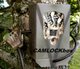 Cabela's Outfitter Series™ 8MP Black IR Security Box