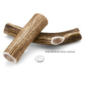 Medium Whole Elk Antler Dog Chew